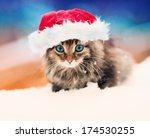 Little Kitten Wearing Santa's...