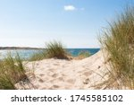 Beautiful Sand Dunes By The...