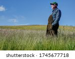 A Farmer Stands On His Organic...