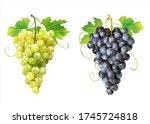 ripe white and dark grapes... | Shutterstock .eps vector #1745724818