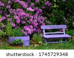 Pink  Wooden Bench With Pink...