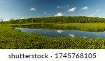 Pre Delta National Park...