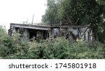 Wooden Ruins  Ramshackle Woode...