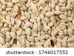 Orange Seeds Used As Chinese...