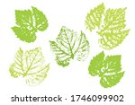 collection of autumn leaves... | Shutterstock .eps vector #1746099902