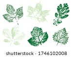 the imprint of the leaves.... | Shutterstock .eps vector #1746102008