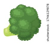 broccoli vector icon.cartoon...   Shutterstock .eps vector #1746129878