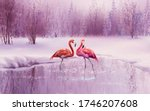 A Pair Of Pink Flamingos Stand...