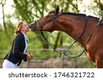 Horse Rider Girl And Horse On A ...