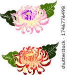 colorful flower with... | Shutterstock .eps vector #1746776498