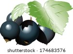 branch of the ripe berries of a ... | Shutterstock .eps vector #174683576