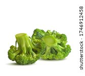 broccoli low poly. fresh ... | Shutterstock .eps vector #1746912458