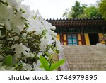 Arangsa Shrine is a part of Yeongnamnu Pavilion in Milyang The sign says Arangsa written in Chinese character  Yeongnamnu Pavilion is one of the best pavilions in Korea