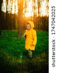 Small photo of Little boy in a yellow jacket at sunset in the forest blowing a dandelion. Nature care concept. Take care of the environment. Action against deforestation.transient autofocus, noise