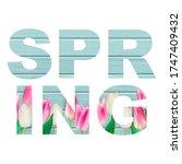abstract spring word vector...   Shutterstock .eps vector #1747409432