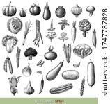 vegetables collection hand draw ... | Shutterstock .eps vector #1747787828