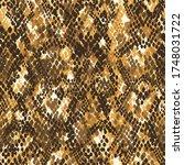 abstract snake skin wallpaper ... | Shutterstock .eps vector #1748031722