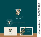 letter v with leaf beauty... | Shutterstock .eps vector #1748082488