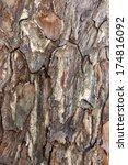wood.texture.background | Shutterstock . vector #174816092