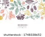 summer fruits  berries and...   Shutterstock .eps vector #1748338652