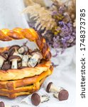 cookies mushrooms glazed in... | Shutterstock . vector #1748373785