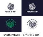 Creative Natural Brain Plant...