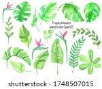 Watercolor Tropical Leaves ...