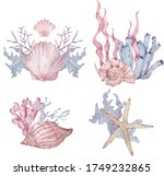 Watercolor Set Of Sealife...