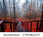 Red Autumn Forest Park Stair...