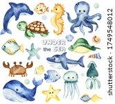 Underwater Creatures  Whale ...