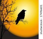 raven in front of moon | Shutterstock .eps vector #17496601