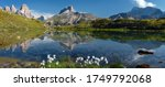 Awesome Alpine Highlands In...