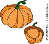 vector drawing of pumpkins.... | Shutterstock .eps vector #1750116512