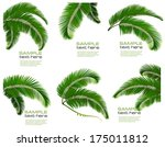 set green branches with leaves... | Shutterstock .eps vector #175011812