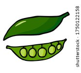 green pea pod with peas. hand... | Shutterstock .eps vector #1750122158