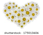 heart made from real wild... | Shutterstock . vector #175013606