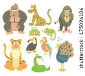 jungle animals vector set  | Shutterstock .eps vector #175096106