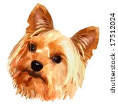 vector cute little terrier dog | Shutterstock .eps vector #17512024