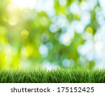 Blurred Nature Background. In...
