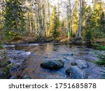 Forest River Rocks In Autumn....