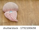 Pink Jellyfish Toy On Wooden...