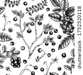 forest berries and flowers... | Shutterstock .eps vector #1752520118