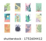 set of abstract plants banners... | Shutterstock .eps vector #1752604412