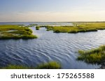 Ocean Inlet With Marsh Grass