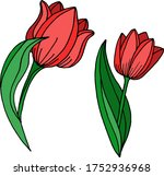 vector drawing of tulip flowers.... | Shutterstock .eps vector #1752936968