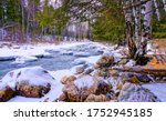 Forest River Rocks Snow View....