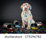 Stock photo a silly lab puppy looking like he just got caught getting into paint cans and making a colorful 175296782