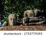 The Broken Buddha Head In...