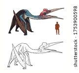 Prehistoric Pterosaur...