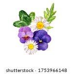 watercolor drawing wild flowers ...   Shutterstock . vector #1753966148